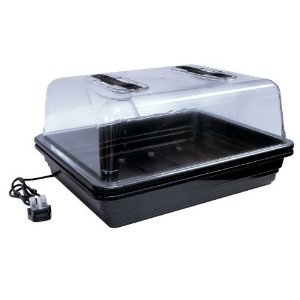 Large Heated Stwerart Propagator