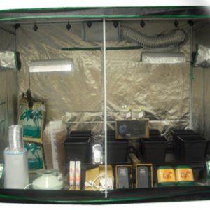 2.4m x 1.2m Wilma Big 8 Grow Tent Kit