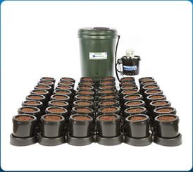IWS 36 Pot System