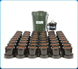 IWS 48 Pot System