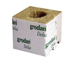 10 x Grodan Rockwool Cubes 3 inch With Large Holes