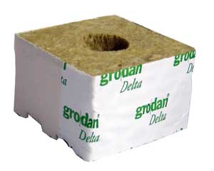 10 x Grodan Rockwool Cubes 4 inch With Large Holes