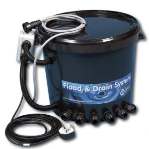 Iws Brain Bucket and Timer