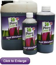 Plant Magic Root Stimulant 1 litre